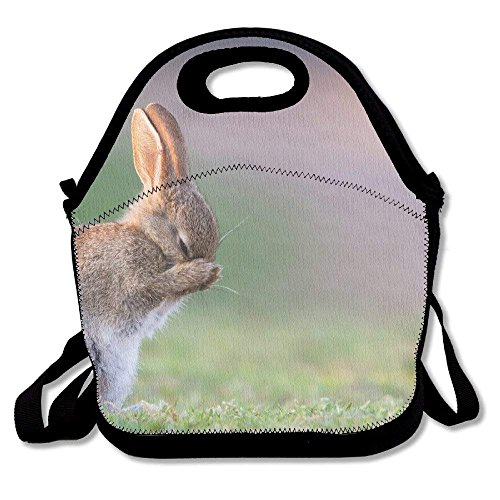Animal Bunny Cute Rabbit Insulated Lunch Bag - Neoprene Lunch Bag - Large Reusable Lunch Tote Bags for Women, Teens, Girls, Kids, Baby, Adults Portable Carry