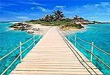Cassisy 1,5x1m Vinilo Mar Fondo de Fotografia Muelle Puente de Madera Tropical Isla Caribe Playa de mar Telón de Fondo Photo Booth Party Photo Studio Props