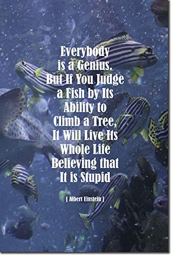 TPCK Albert Einstein Zitat Kunstdruck - Everybody is a Genius (2) - Foto Poster Plakat Geschenk - Fish Ocean - Maße: 60 x 40 cm