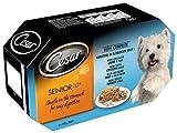 Cesar vassoio di cibo per cani Senior selezione mista a Jelly 4x 150g, confezione da 6, totale 24vassoi
