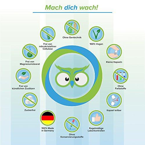Vitamin B12 Kapseln - Ohne künstliche Zusatzstoffe - vegan - Qualität aus Deutschland - 100% Zufriedenheitsgarantie - 1000µg hochwertiges Methylcobalamin - deutsche Laboranalytik - Vitamineule® - 5