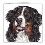 Berner Sennenhund Geschenk–Qualität Grüße Karte mit gratis Auto-Lufterfrischer