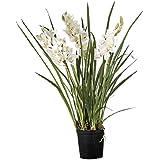 Floral Concept 63058 - Cymbidium Orchid, 100 x 45 x 45 cm, color blanco