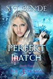 Perfekt Match (The Ære Saga Book 4)