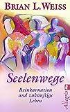 Seelenwege: Reinkarnation und zukünftige Lebenswege - Brian L. Weiss