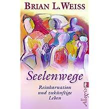 Seelenwege: Reinkarnation und zukünftige Lebenswege