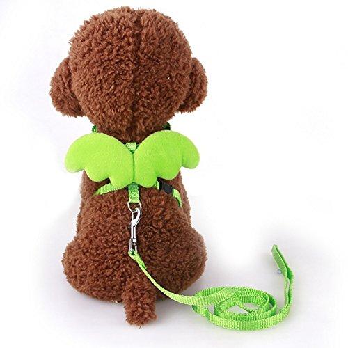 Kostüm Dog Kaninchen - Pet Dog Brustgurt Geschirr mit Traktion Seil Cute Pet Cat Dog Leine Geschirr mit Engel Flügel für kleine Hund Katze Kaninchen