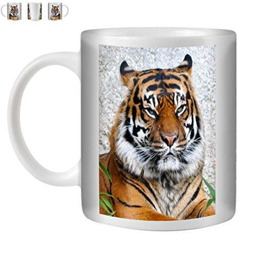 STUFF4 Tasse de Café/Thé 350ml/Tigre/Animaux Sauvages/Céramique Blanche/ST10