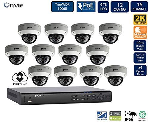 Flir Digimerge IP Security Kamera Sytem mit Dnr400P Serie 2 Festplatteneinschübe Nvr und Quad-HD-Motor 4 Mp (2K) Vandal-Resistant-Dome-Kamera (12-Dome-Kameras mit 16-Kanal-6TB NVR) - Lorex-security-kamera
