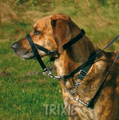 Trixie 13003 Top Trainer Ausbildungsgeschirr, M: 27 cm