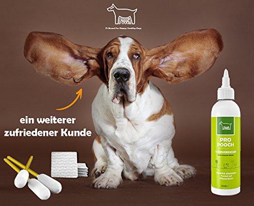Pro Pooch Ohrenreiniger für Hunde (250 ml) | Eliminiert Jucken, Kopfschütteln & Gerüche in 3 Tagen | Sanfte Lösung für Hunde mit Milben, Hefepilzen, Juckreiz & Ohrgeruch | Natürlich abgeleitete Formel auf Pflanzenbasis - 6