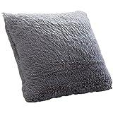 Ruikey Soft Plush Decoración para el Hogar Sofá Fundas de cojín de almohadilla de cintura Cubre Plaza de almohadas de color sólido regalo Decoración 43 × 43cm (Gris )