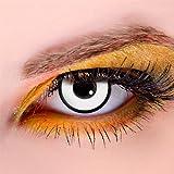 Meralens White Zombie Kontaktlinsen mit Behälter ohne Stärke, 1er Pack (1 x 2 Stück)