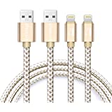 iProtect Premium Set 2x Ladekabel Datenkabel Lightning mit Nylon-Flecht-Umhüllung für Apple iPhone SE, 5, 5s, 5c, 6,6s, 6 Plus, 7, 7 Plus, iPod, iPad etc. in Gold