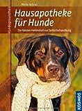 Hausapotheke für Hunde: Die besten Heilmittel zur Selbstbehandlung