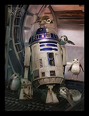 PYRAMID - Cadre Star Wars EP8 R2-D2 and Porgs