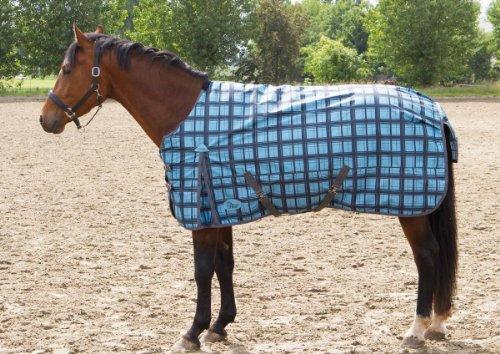 Harry\'s Horse Horten 200 Outdoordecke | Outdoordecke | Pferdedecke | Regendecke hellblau/kariert | Stalldecke