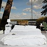 Apalis Vliestapete Relax Fototapete Breit | Vlies Tapete Wandtapete Wandbild Foto 3D Fototapete für Schlafzimmer Wohnzimmer Küche | mehrfarbig, 94779