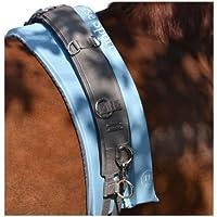 TransHorse Sport Memory - Cinturón de Longiergurt, negro (negro)