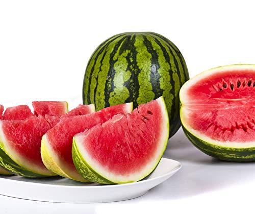 Bobby-Seeds Melonensamen Viking F1 Wassermelone Portion