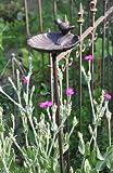 Vogeltränke auf Stab – Höhe 98cm - 2
