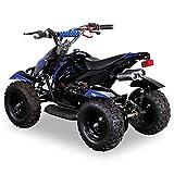 Miniquad Kinder ATV Cobra blau / schwarz - 3