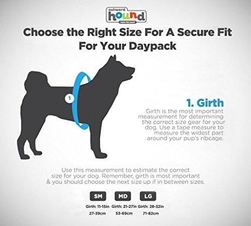 Outward Hound DayPak for Dog, Medium, Blue 6