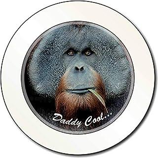Orang-Utan 'Daddy Cool' Vatertags-Geschenk AutovignetteGenehmigungsinhaber Gesch