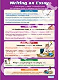 Writing an Essay |Functional Skills Educational Wall Chart/Poster in high gloss paper (A1 840mm x 584mm)