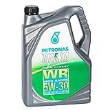 Selenia WR Pure Energy 5W - 30 Olio per motore