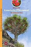 Kanarische Pflanzenwelt: Die heimische Flora (Naturführer)