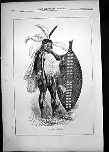 Bouclier Antique d'Arme de Guerrier de Zoulou du Portrait 1879