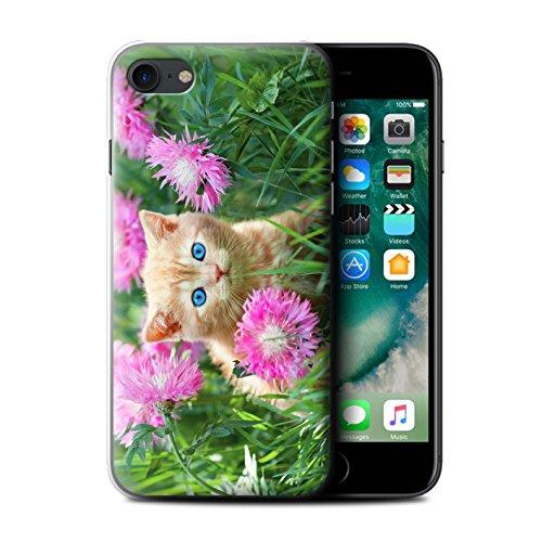 Stuff4 Hülle / Case für Apple iPhone 7 Plus / Glass Wein Muster / Süße Kätzchen Kollektion Garten