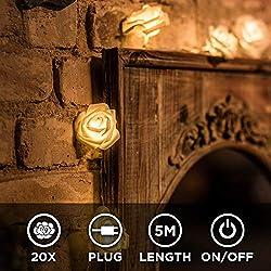 CozyHome LED Lichterkette Rosen weiß - 5m strombetrieben | 20 Blumen warmweiß | Rosenlichterkette Strom | Tumblr Deko für: Mädchen Schlafzimmer, Hochzeit, Schminktisch | Rose Lichterketten mit Stecker
