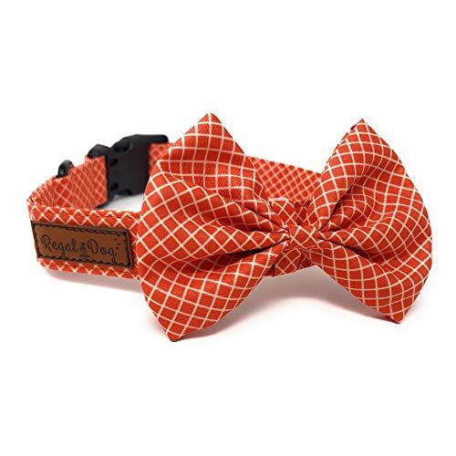 Regal Dog Products Hundehalsband mit Fliege, passend für XS, S, S, M, L, Hund, Katze, Welpen, lustige Geburtstags-Idee - Smoke Dog, Medium, Orange Buffalo Plaid