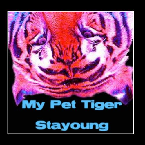 Stayoung (Pet Tiger)