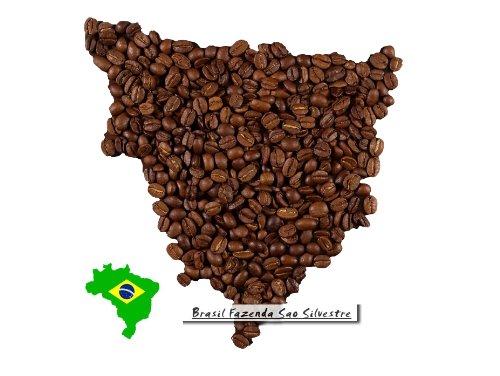 Brazil Sao Silvestre - 1000g - Ganze Bohne
