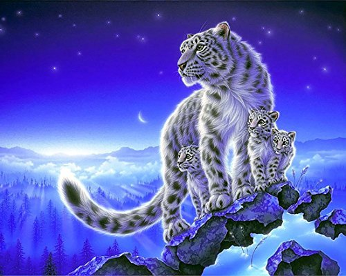 21secret 5D Diamant DIY Malerei Full Bohrer handgefertigt Snow Leopard unter der Night Sky Home Decor Stickerei Kreuzstich 30x40CM -