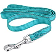 Reflective Lining Pet Dog Lead Leash with Clip (2cm, Turquoise)