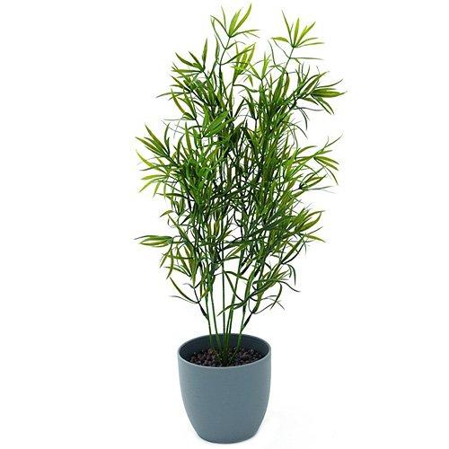 euro-palms-82530337-pianta-ornamentale-orchidea-80-cm-lila-verde-grun