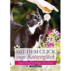 Mit dem Click zum Katzenglück: Katzen kreativ beschäftigen und erziehen