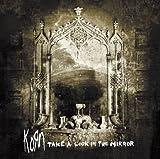Songtexte von Korn - Take a Look in the Mirror