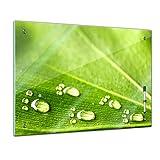 Memoboard 60 x 40 cm, Pflanzen - Blatt und Wasser - Glasboard Glastafel Magnettafel Memotafel Pinnwand Schreibtafel - Blatt - Gras - grün - bunt - Garten - Blume - Pflanzenmotiv - Natur - Blumenbild - Bild auf Glas - Glasbild - Design - Handmade - Art