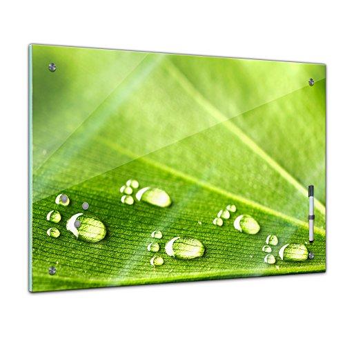 Memoboard 80 x 60 cm, Pflanzen - Blatt und Wasser - Memotafel Pinnwand - Blatt - Gras - grün - bunt - Garten - Blume - Pflanzenmotiv - Natur - Blumenbild - Glasbild - Handmade