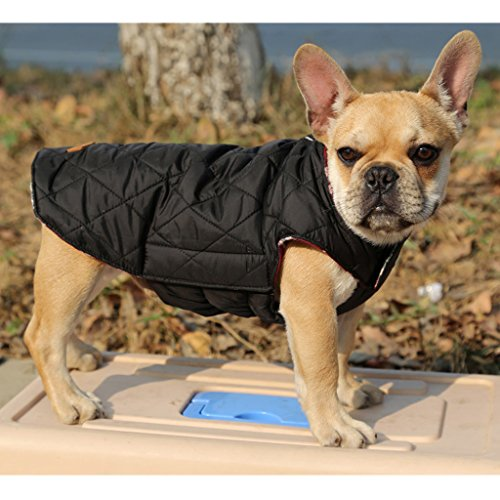 Sharplace Haustier Warmer Winter Kleidung Wasserdichter Hundemantel - Grün, M