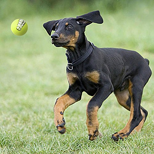 Gowind6Pet Spielzeug Haarverdichtung PVC-Pet Hund Zahn Ball Spielzeug kauen Sound Puppy Training Spielen Spielzeug