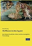 Die Pflanzen im alten Ägypten: ihre Heimat, Geschichte, Kultur und ihre mannigfache Verwendung - Franz Woenig