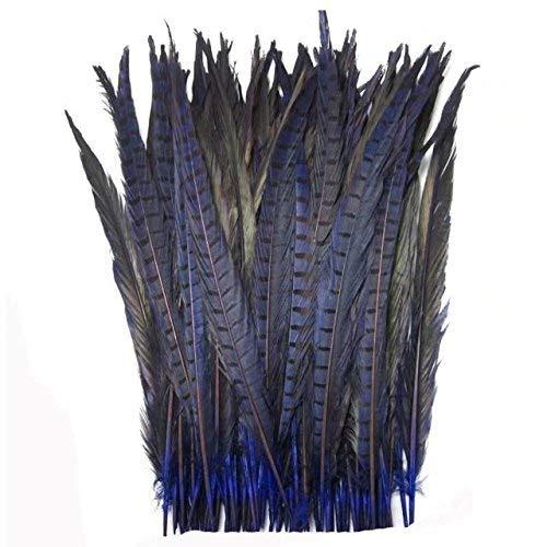 James Fashion Lin Fasanfederschwanz, natürliche Fasanfedern, 35-40 cm, Natur, 10 Stück blau