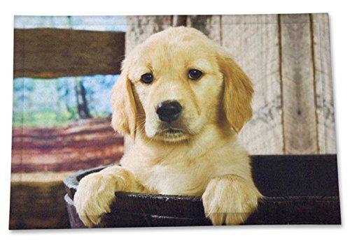 Bavaria Home Style Collection - Fussmatte - Schuhabtreter - Hund - ca. 45 x 68 cm (Golden Retriever)