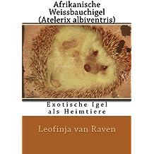 Afrikanische Weissbauchigel (Atelerix Albiventris): Exotische Igel als Heimtiere